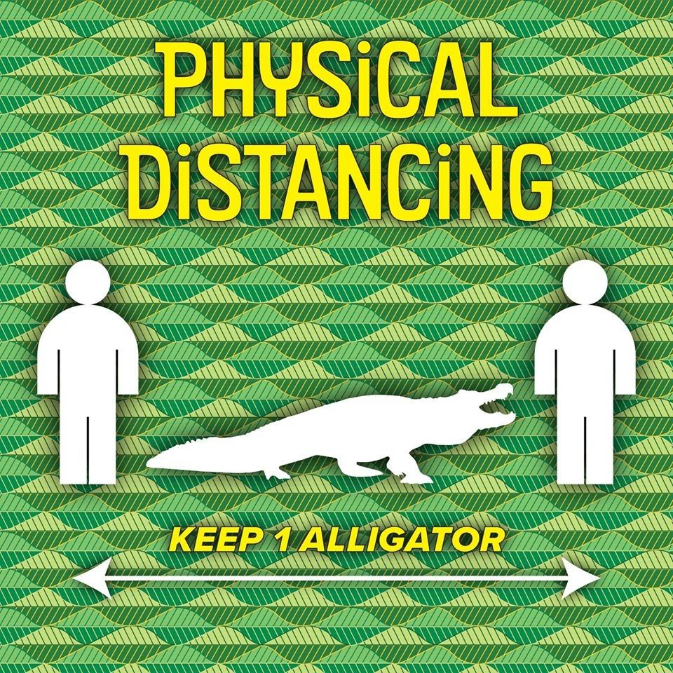 Make It Your Own - Alligator Social Distancing Example